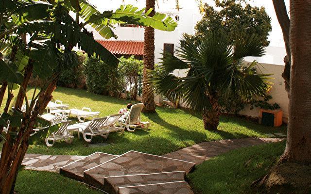 Dom Pedro Garajau