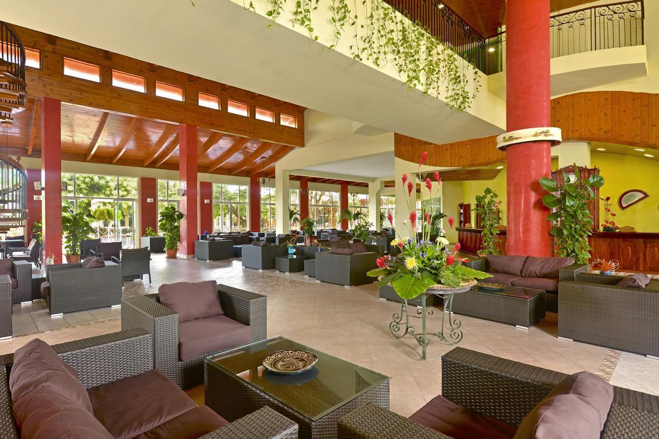 загса куба отель иберостар таинос фото животных случаются