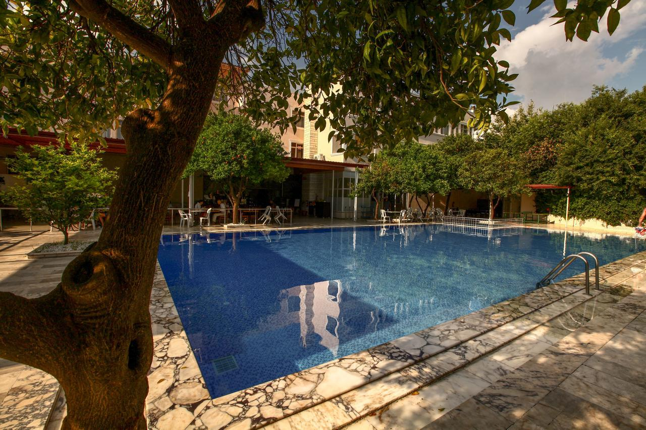 Турция отель лариса фото туристов
