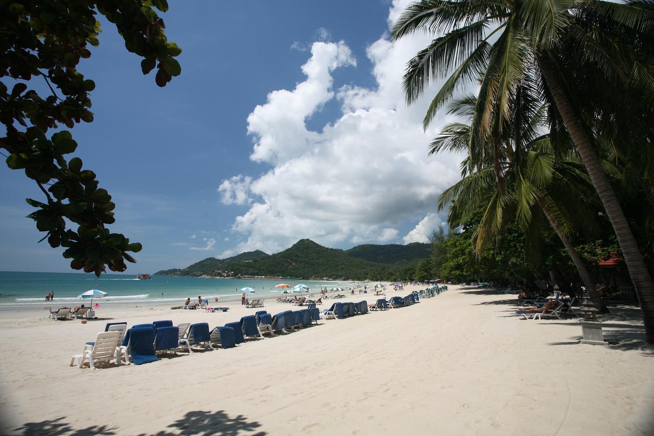Вардане фото города и пляжа словам адвокатов