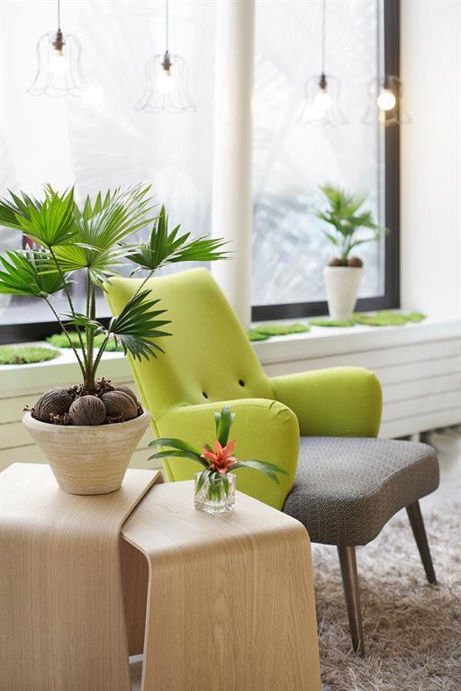 Astotel Palm