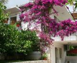 Villa Irena