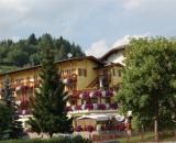 Alle Alpi hotel Moena