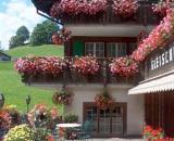 Gletschergarten (Бернские Альпы)