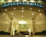 Lavender Central