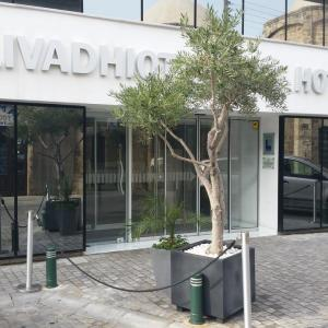 Livadhiotis City Hotel (3*)