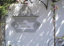 Фотография отеля Punta Regina