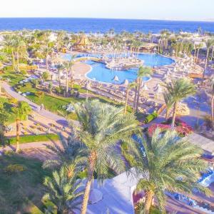 Parrotel Beach Resort (5 *)