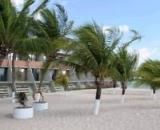 Tropical Tambau
