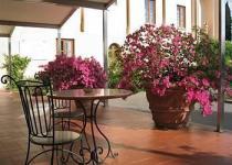 Фотография отеля Villa Gabriele D'Annunzio