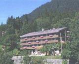 Jungfraublick