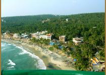 Фотография отеля The Ocean Park Beach Resort