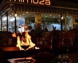 Antalya Mimoza