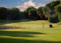 Фотография отеля Golf Hotel Is Arenas