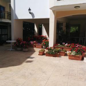 Mariela Hotel (3*)