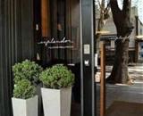 Esplendor Palermo Hollywood Hotel