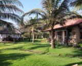 Green Organic Villas