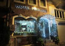 Фотография отеля Promise Hotel
