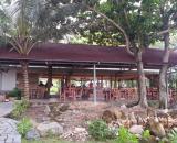 Condao Seatravel Resort