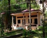 Kim Nam Phuong Hotel