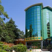 Отель Экодом Сочи
