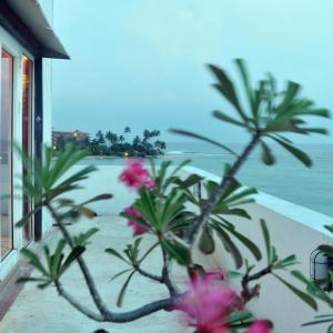 Mamas Coral Beach (3*)