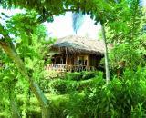 Coral Bay Resort and Spa
