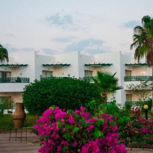 Coral Beach Resort Montazah (4*)